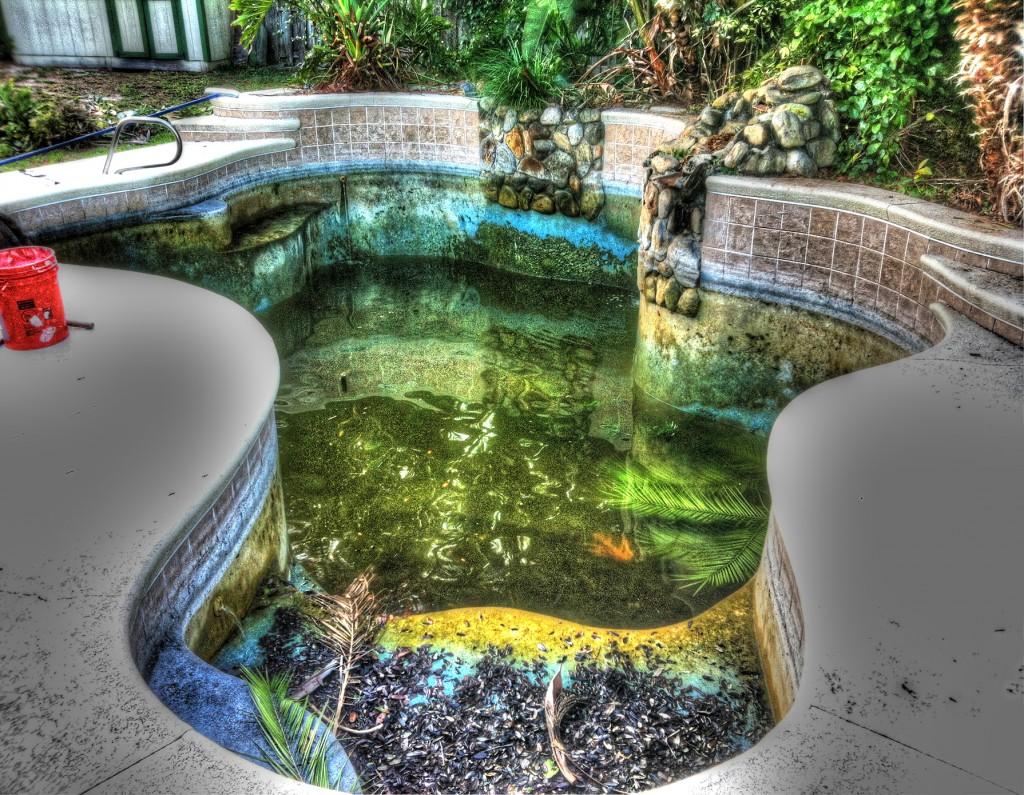 Acid Wash Pool Service : Jurassic park acid wash swimming pool repair service