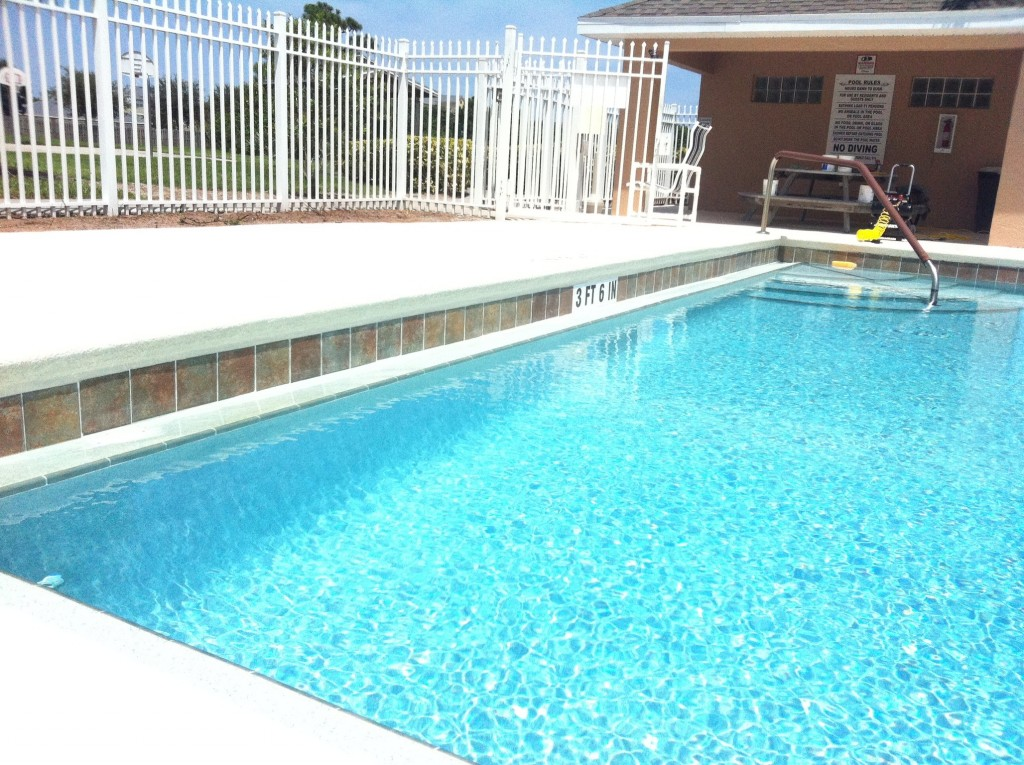 Tree Removal Near Swimming Pools Swimming Pool Repair Service And Resurfacing Company